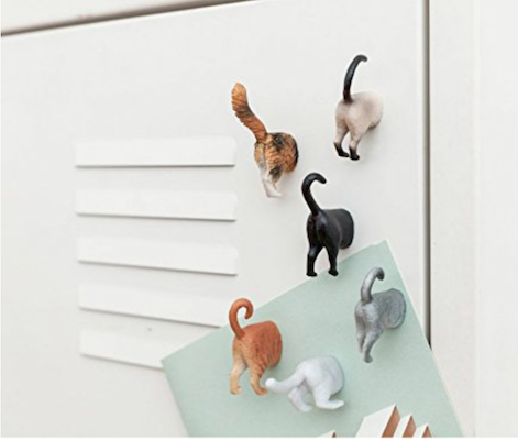 Cat Butt Fridge or Locker Magnets